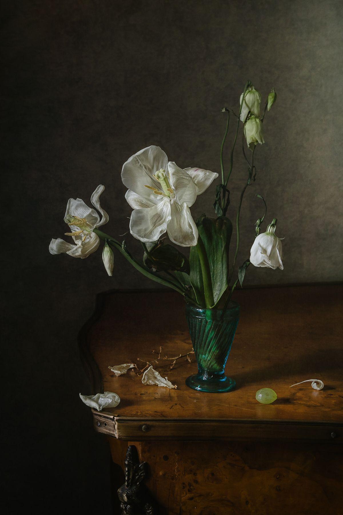 Белые лепестки натюрморт цветы тюльпан эустома