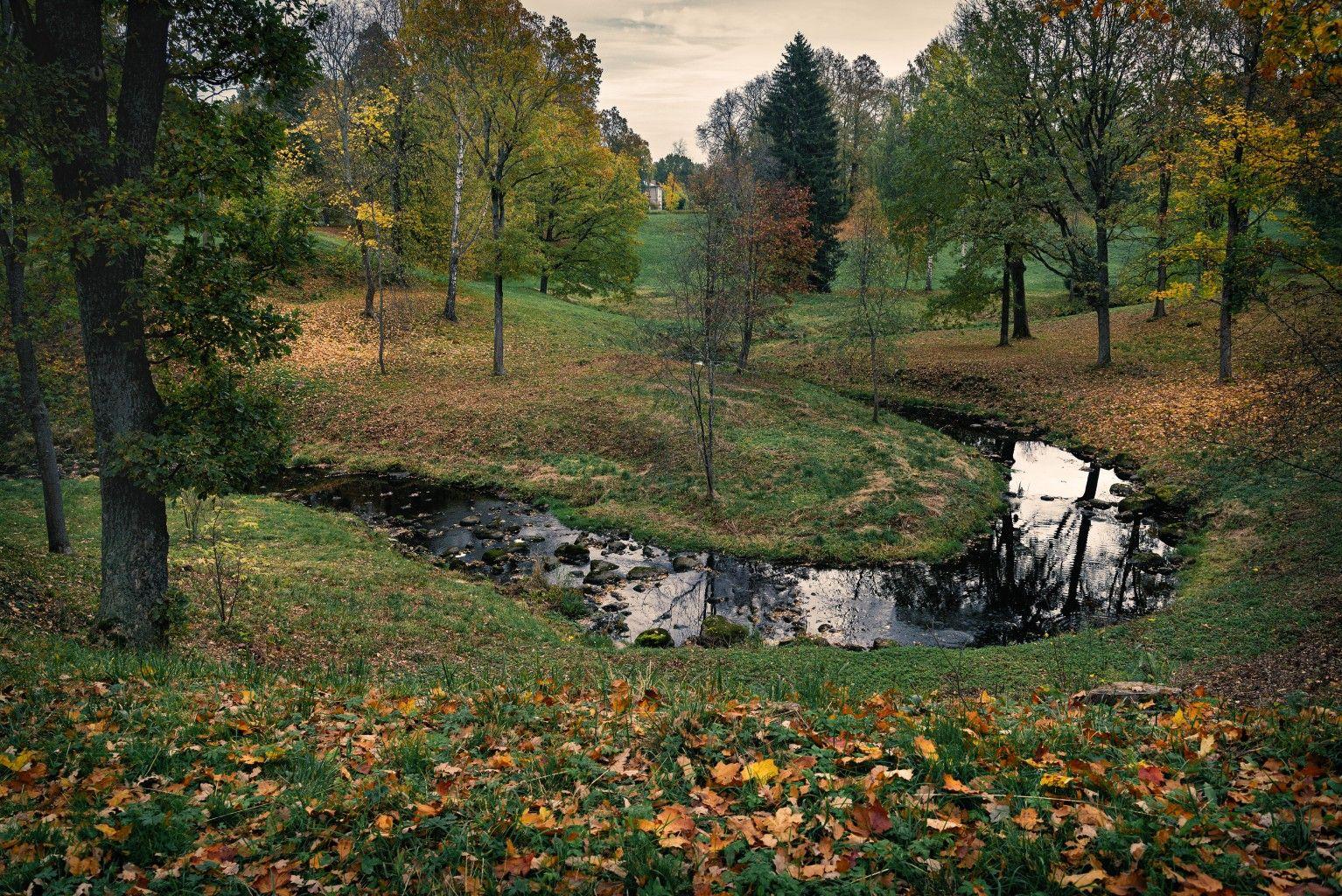В парке Ораниенбаума петербург осень ораниенбаум река листва