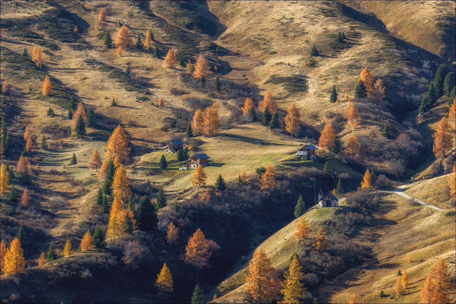 """""""Золото осени"""" доломитовые альпы свет passo giau осень вечер италия alps пейзаж лиственицы dolomites"""