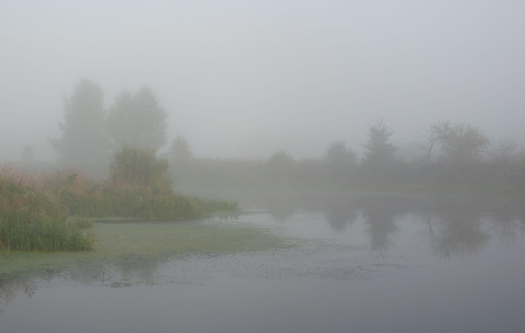 Сентябрьский туман утро туман река