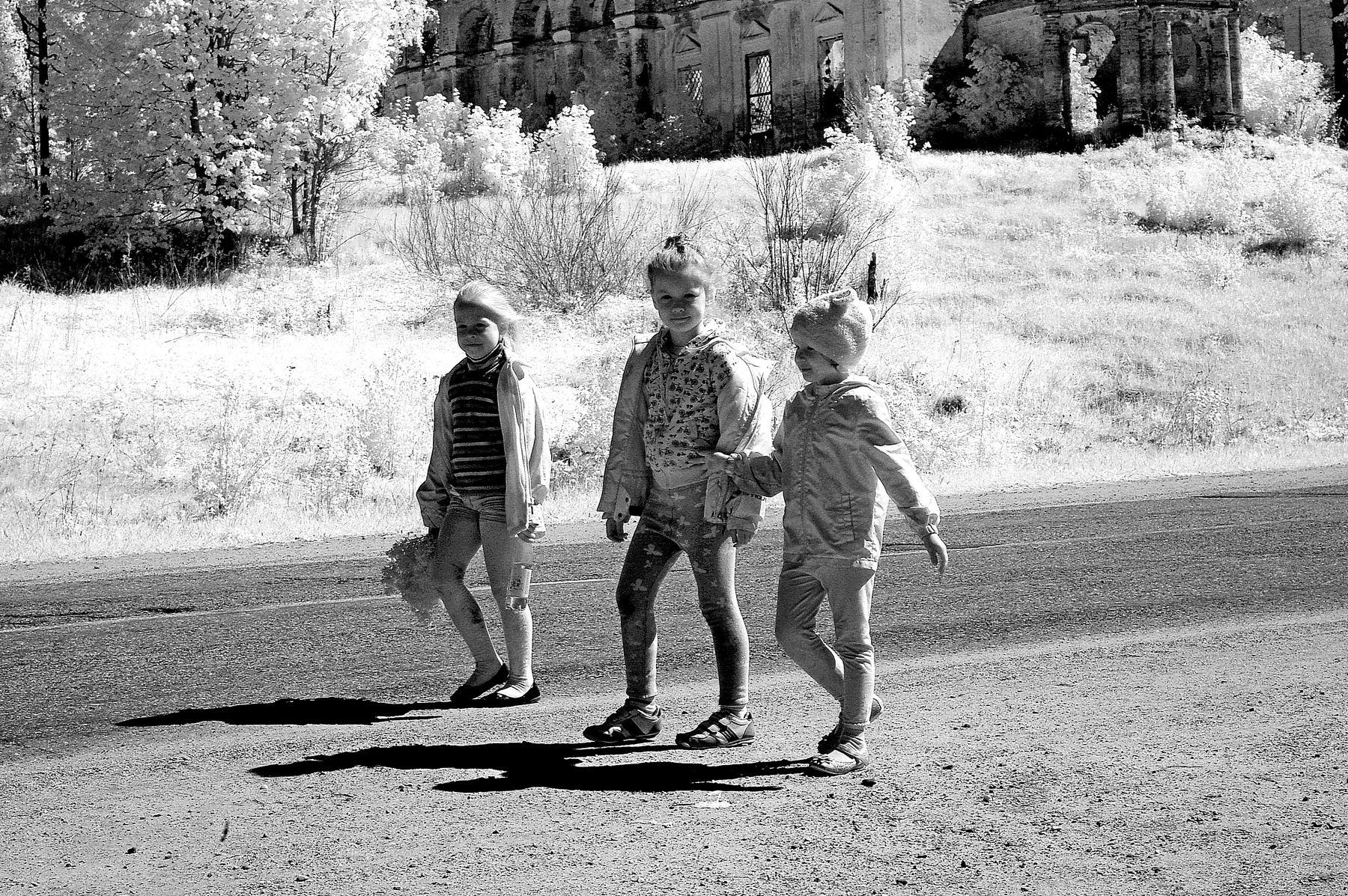 На обочине....Ярославская губерния.Р.Ф.2021г.г. от Р.Х. Инфракрасная,чёрно-белая,монохромная, фотография. (infrared imaging) Инфракрасная чёрно-белая монохромная фотография infrared imaging