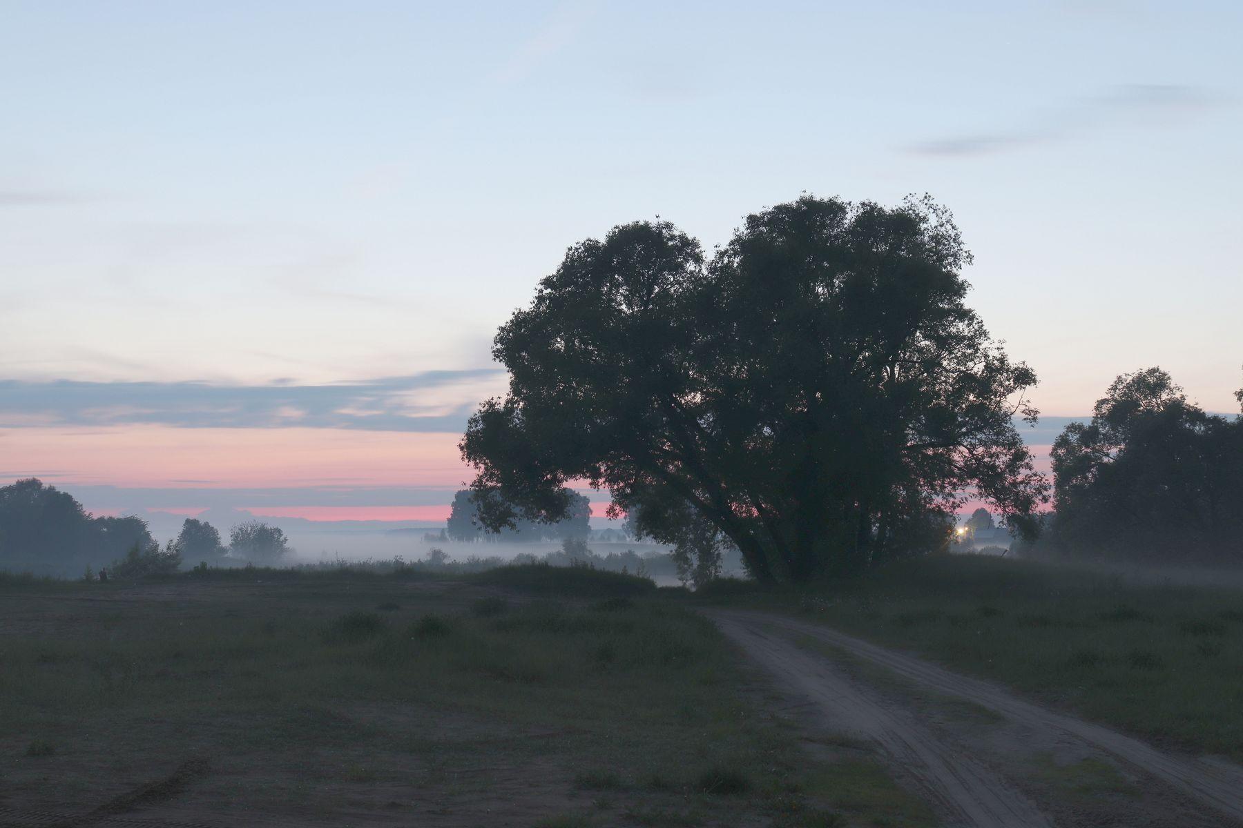 Дороги России Шуя река Теза Ивановская область дорога туман Шуйский район