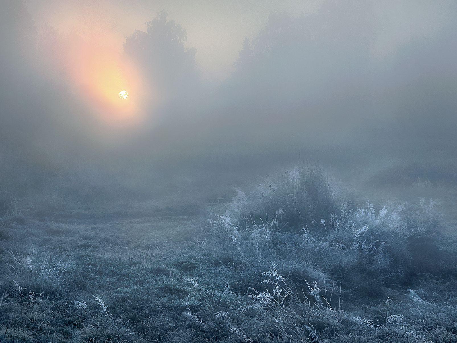 Иней на рассвете.... рассвет иней солнце утро