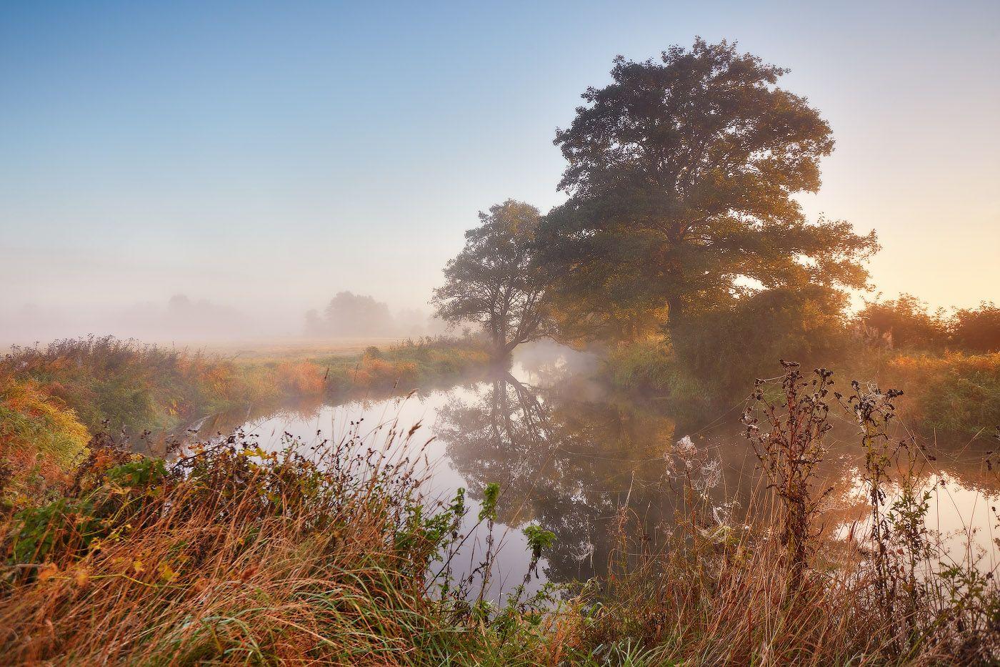 Утро сентября Беларусь Осень Рассвет Река Сентябрь Туман Уса Утро
