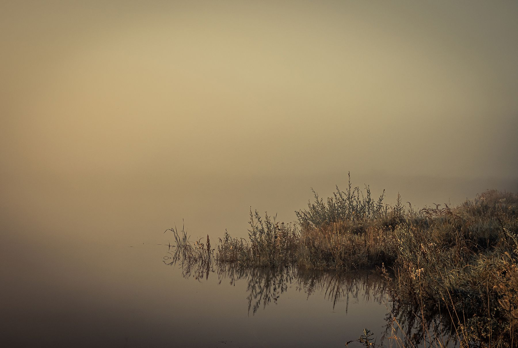 Утро туманное Утро река туман берег