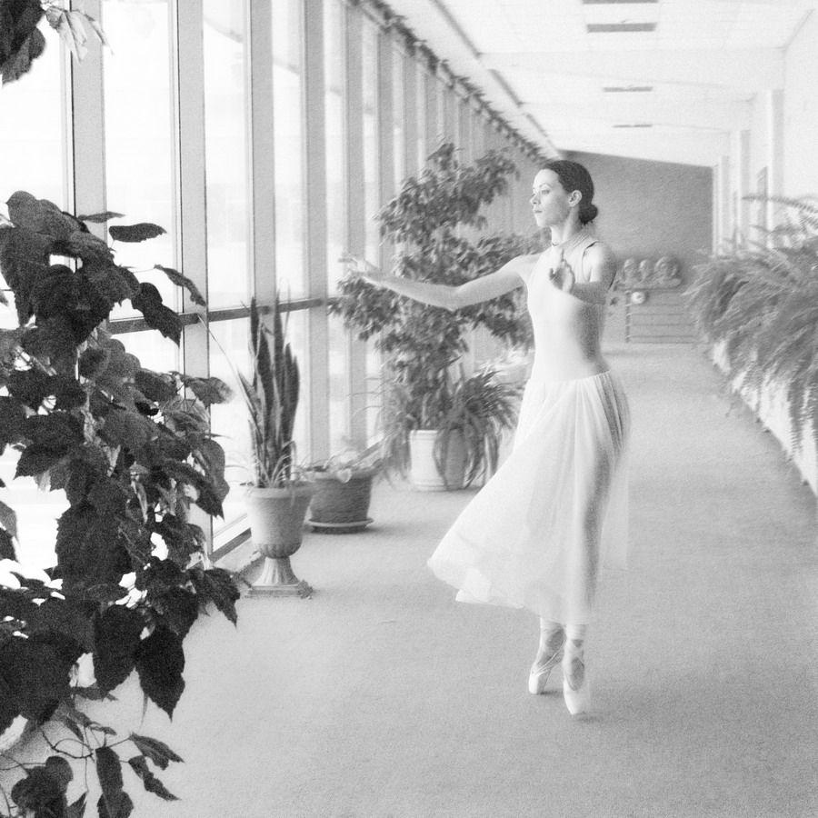 *** балерина коридор экзерсис растение чб