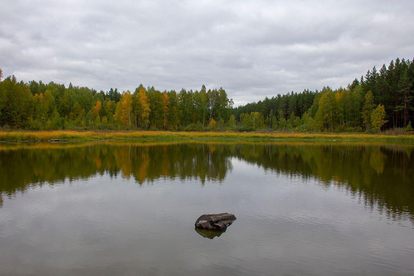озеро Смолокурка в Курганской области