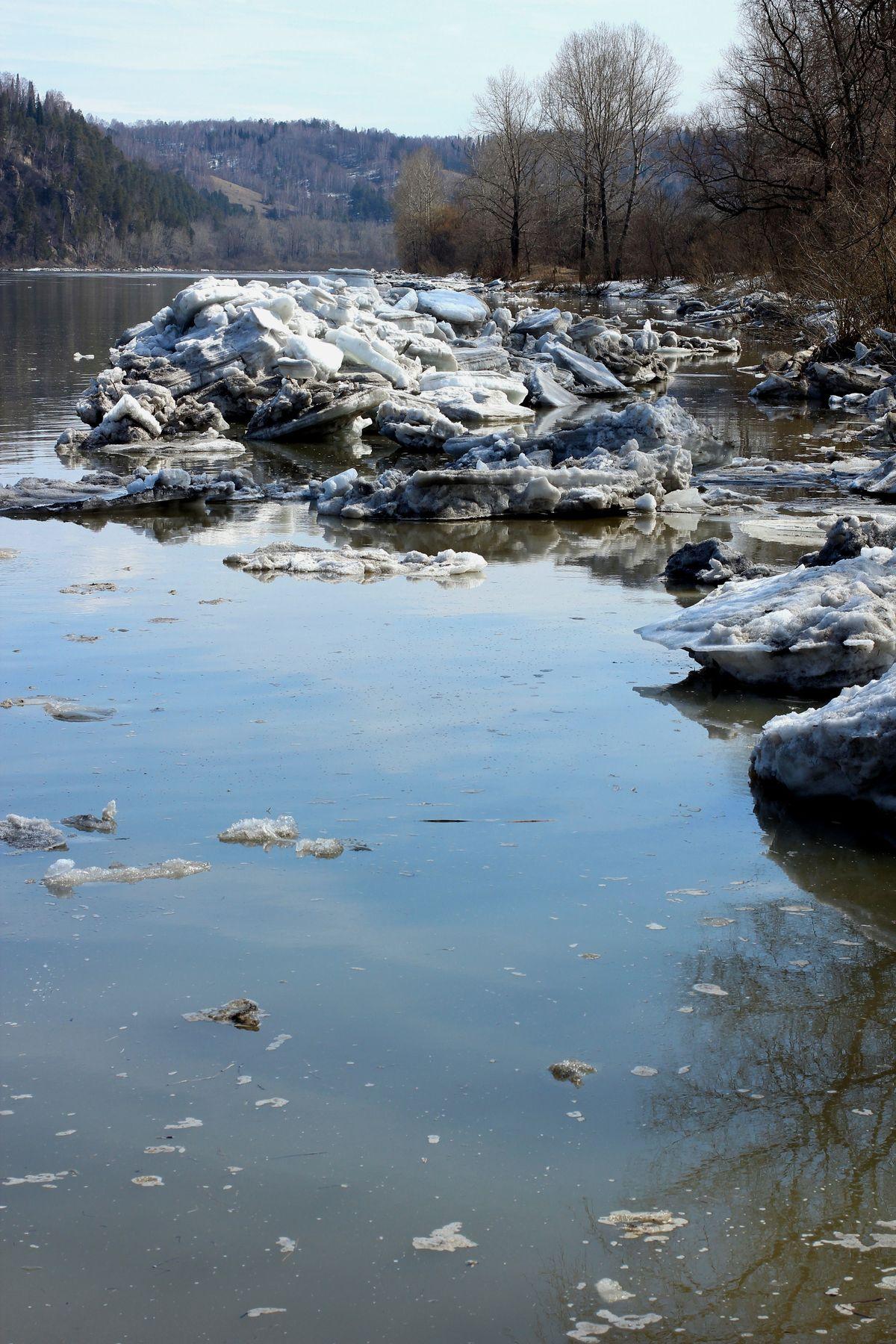 У реки. Пейзаж природа путешествия