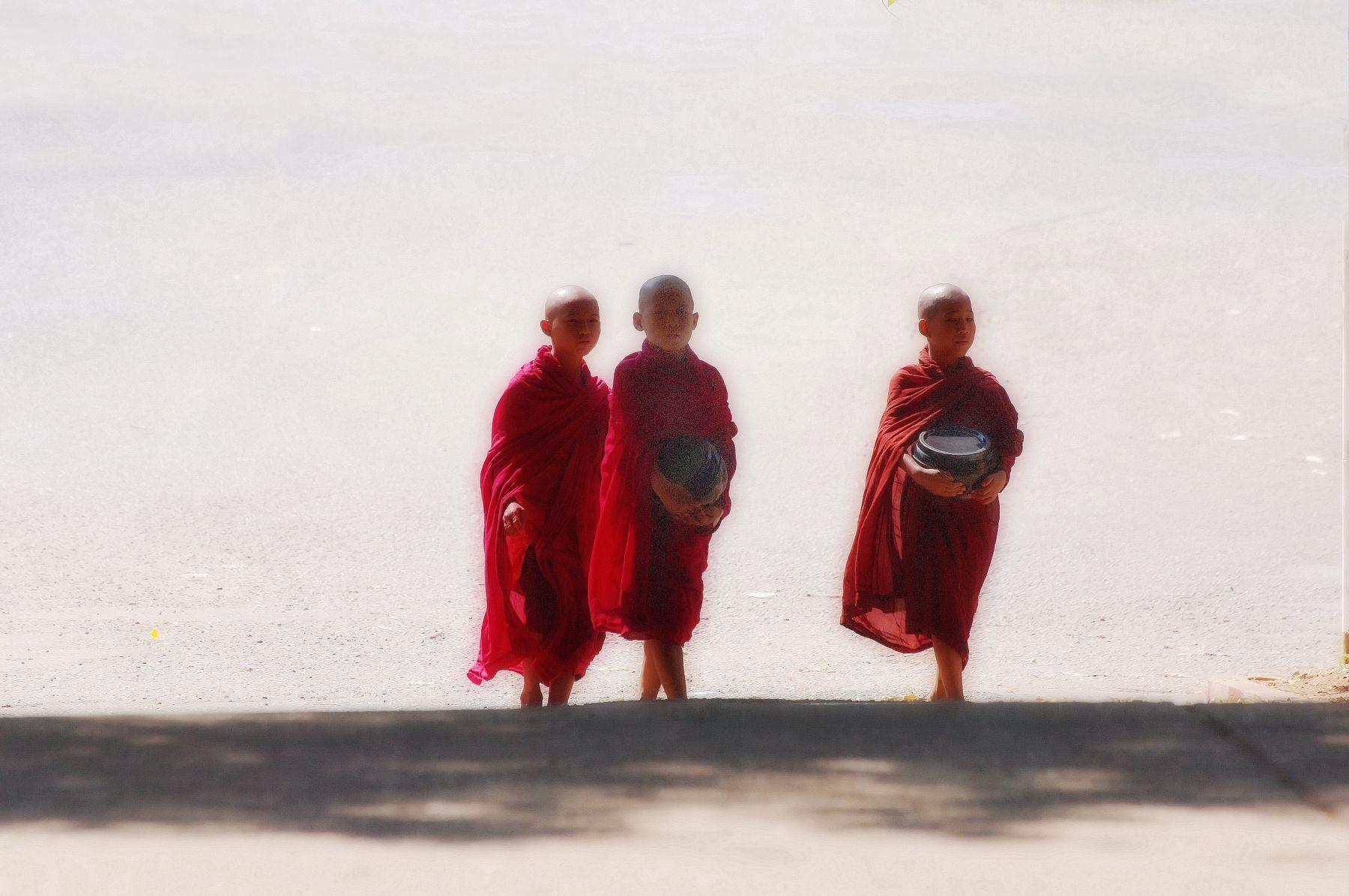 Буддийские будни Камбоджа Молодые монашата