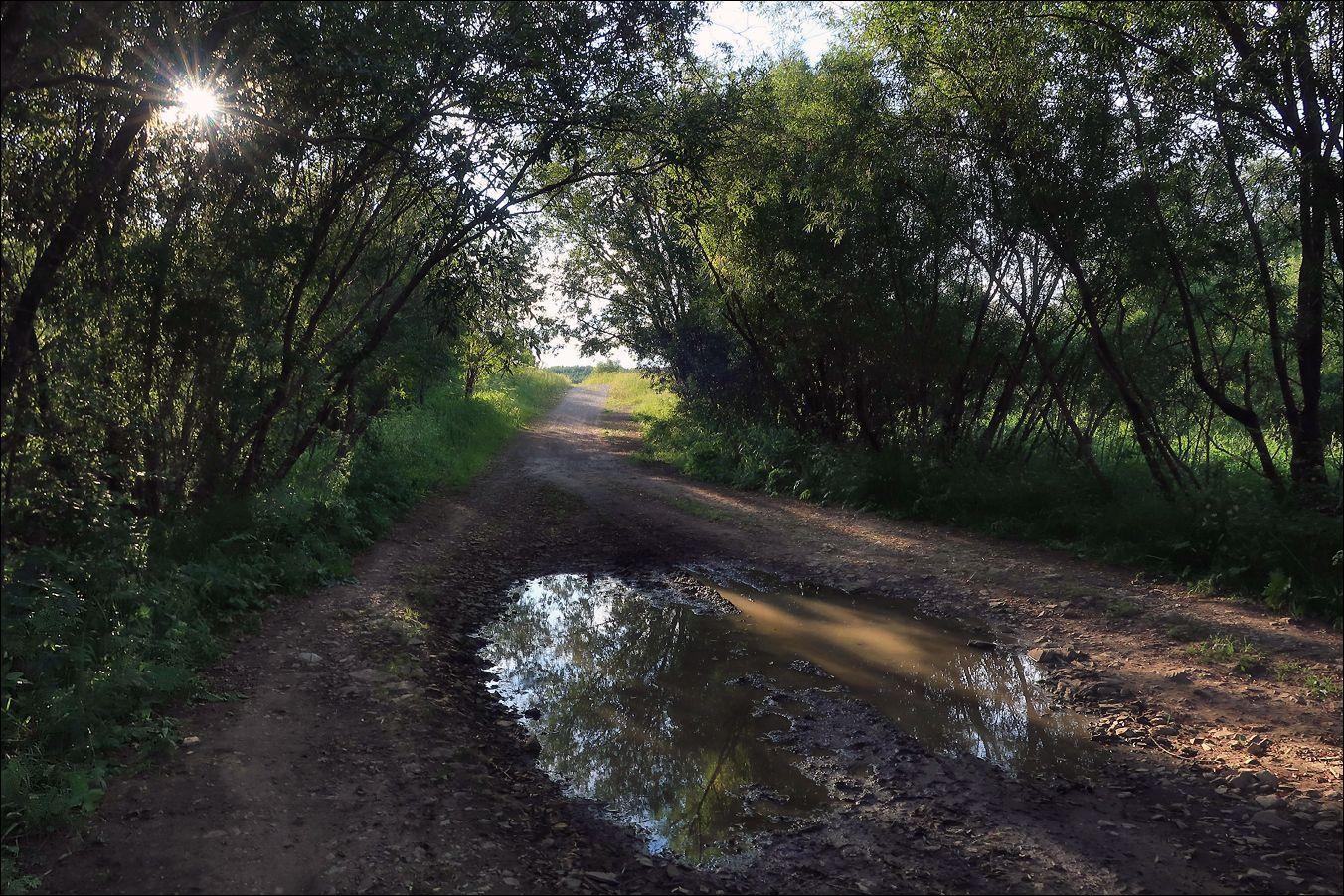 Этюд с лужей лето солнце вода 11.07.2020