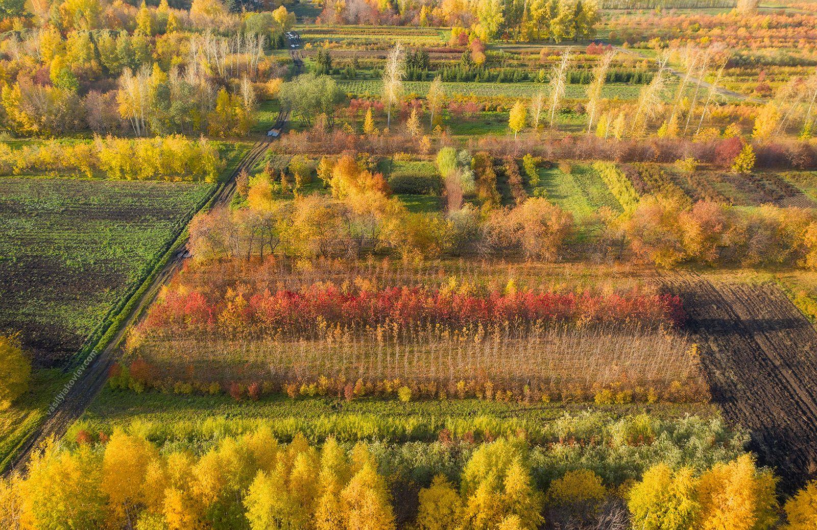 Осенний калейдоскоп 2020 екатеринбург урал фототур яковлевфототур василийяковлев