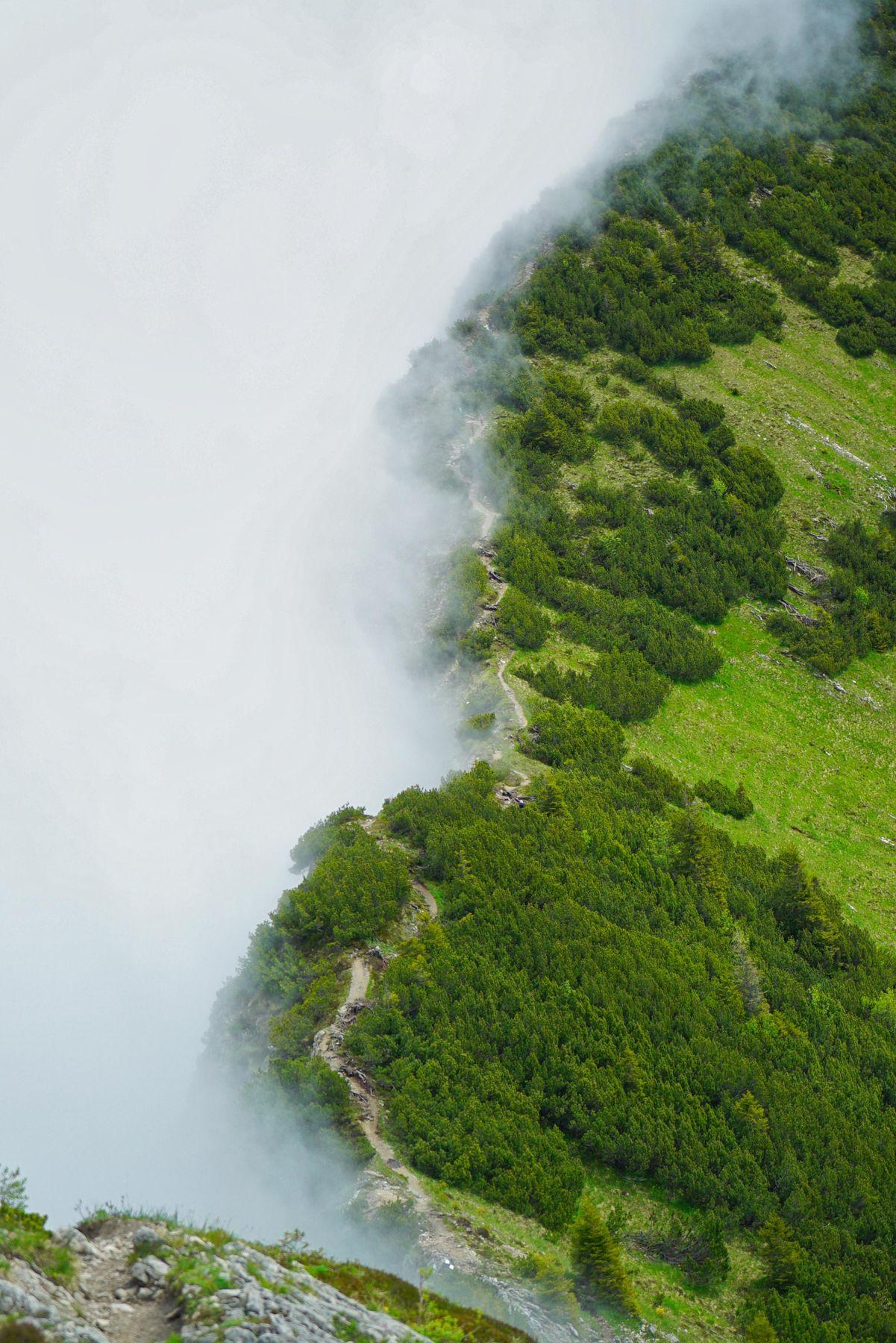 тропинки горы тропинка туман
